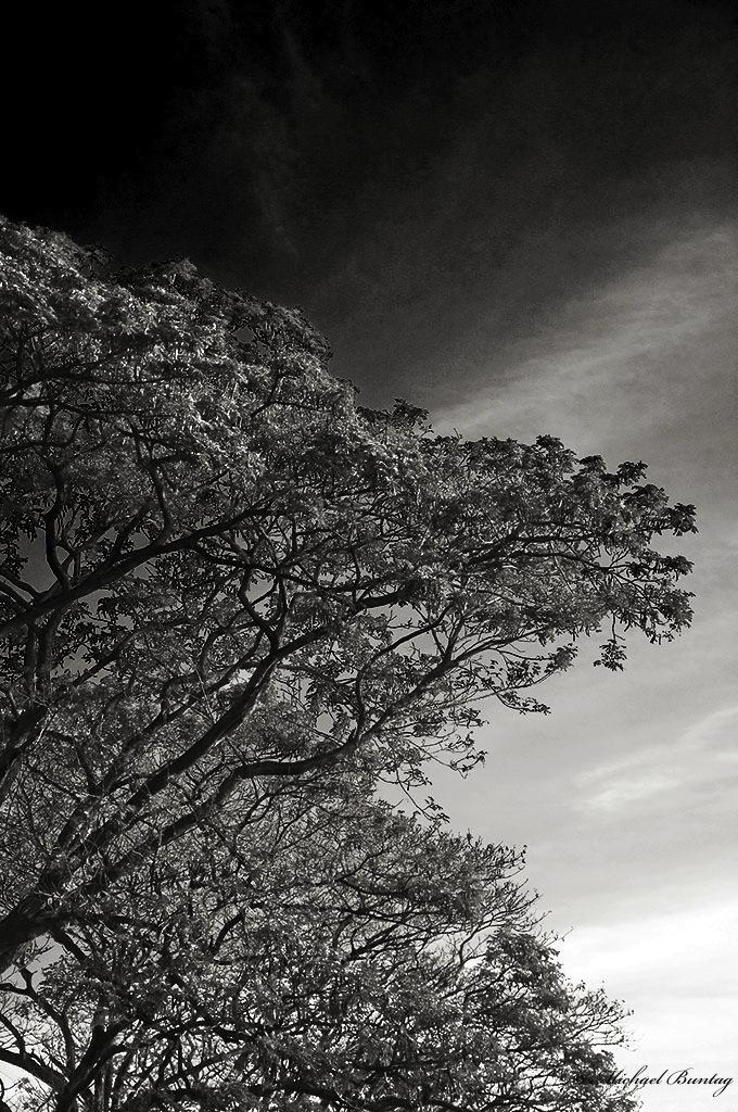 Park, Paranaque, Manila