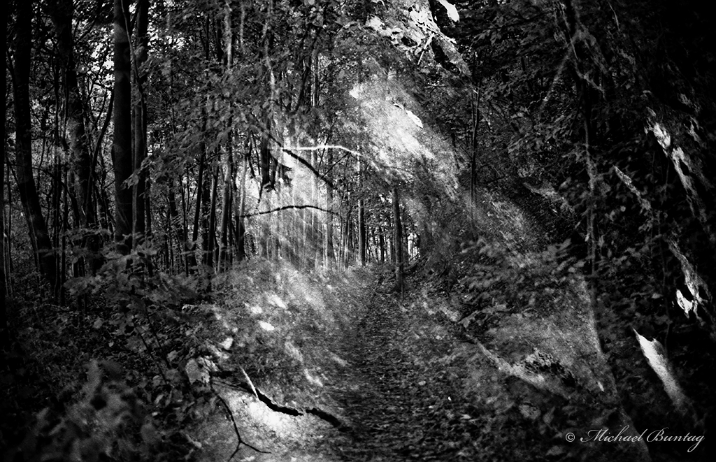 Robert E. Lee Park, Baltimore County, Maryland. Ilford FP4+ 35mm BW film. Double Exposure.