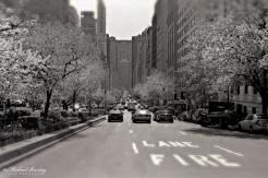 MetLife Building, Skyline, Manhattan, New York, New York. Shot 4/28/01. Ilford HP5+ BW negative 35mm film.